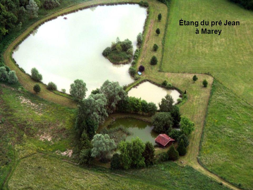Étang de la Mailly à Dombrot-sur-Vair