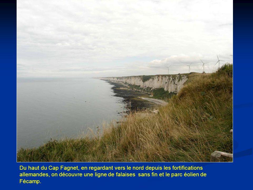 Du haut du Cap Fagnet, en regardant vers le nord depuis les fortifications allemandes, on découvre une ligne de falaises sans fin et le parc éolien de Fécamp.
