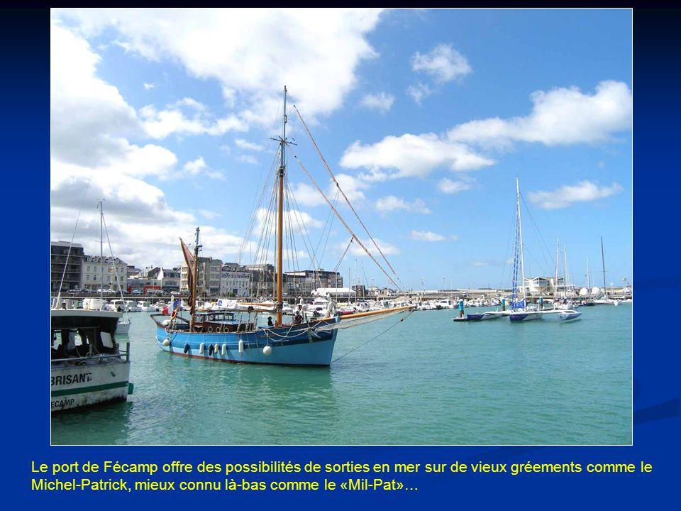 Le port de Fécamp offre des possibilités de sorties en mer sur de vieux gréements comme le Michel-Patrick, mieux connu là-bas comme le «Mil-Pat»…