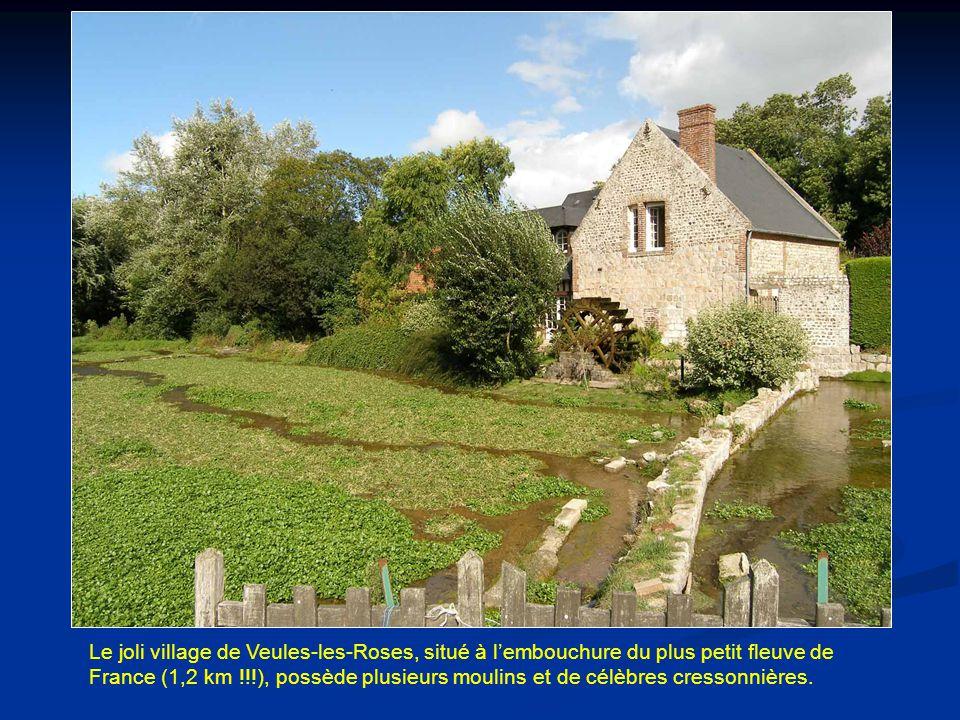 Le joli village de Veules-les-Roses, situé à l'embouchure du plus petit fleuve de France (1,2 km !!!), possède plusieurs moulins et de célèbres cressonnières.