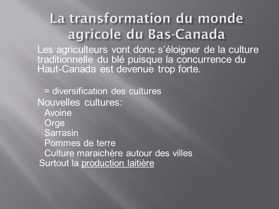 Les agriculteurs vont donc s'éloigner de la culture traditionnelle du blé puisque la concurrence du Haut-Canada est devenue trop forte.