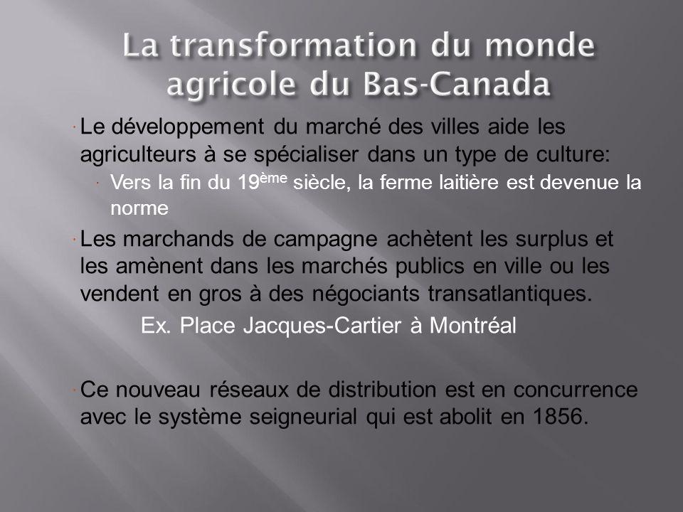 Ex. Place Jacques-Cartier à Montréal
