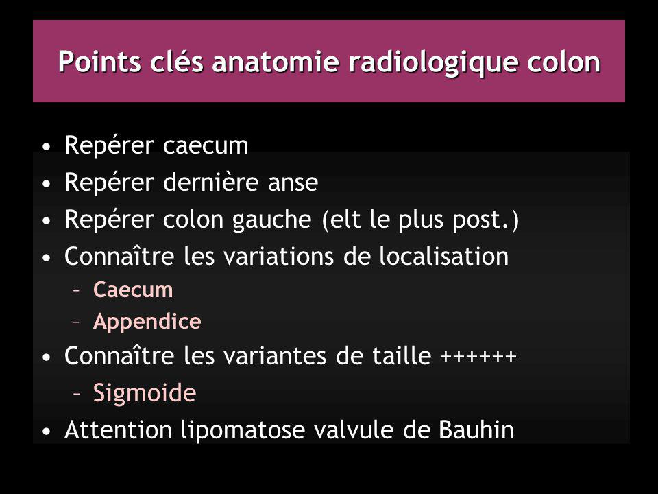 Points clés anatomie radiologique colon