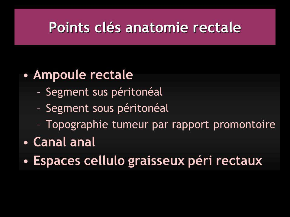 Points clés anatomie rectale