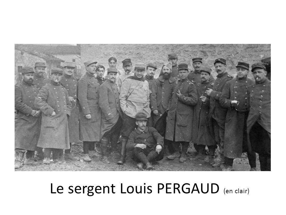 Le sergent Louis PERGAUD (en clair)