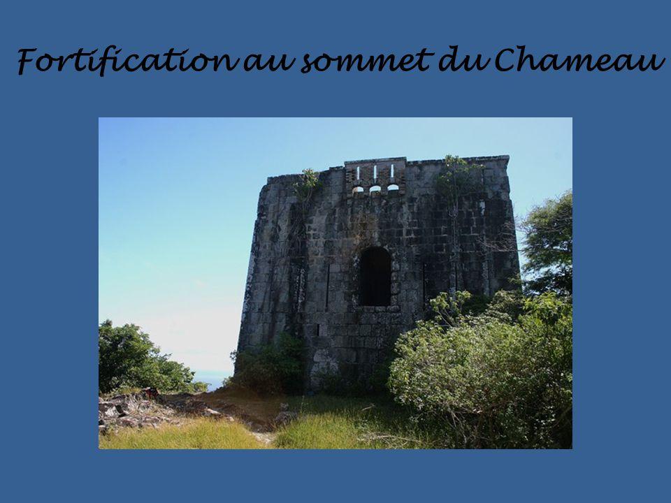 Fortification au sommet du Chameau