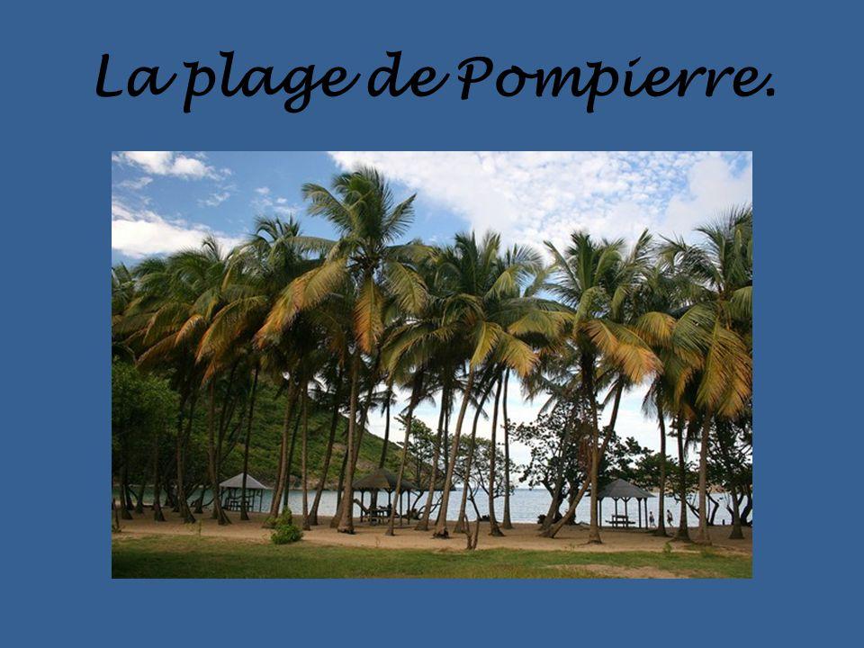 La plage de Pompierre.