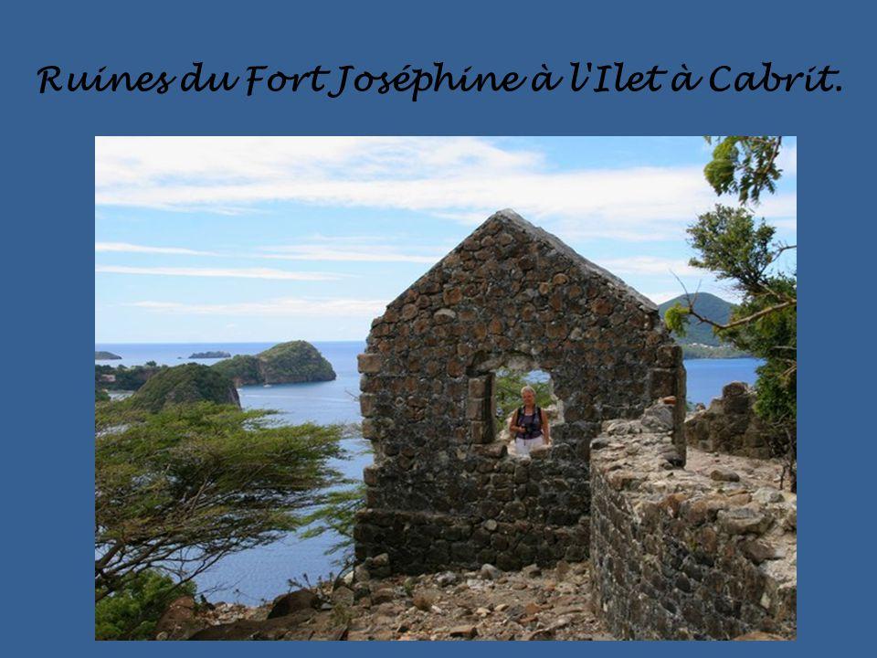 Ruines du Fort Joséphine à l Ilet à Cabrit.