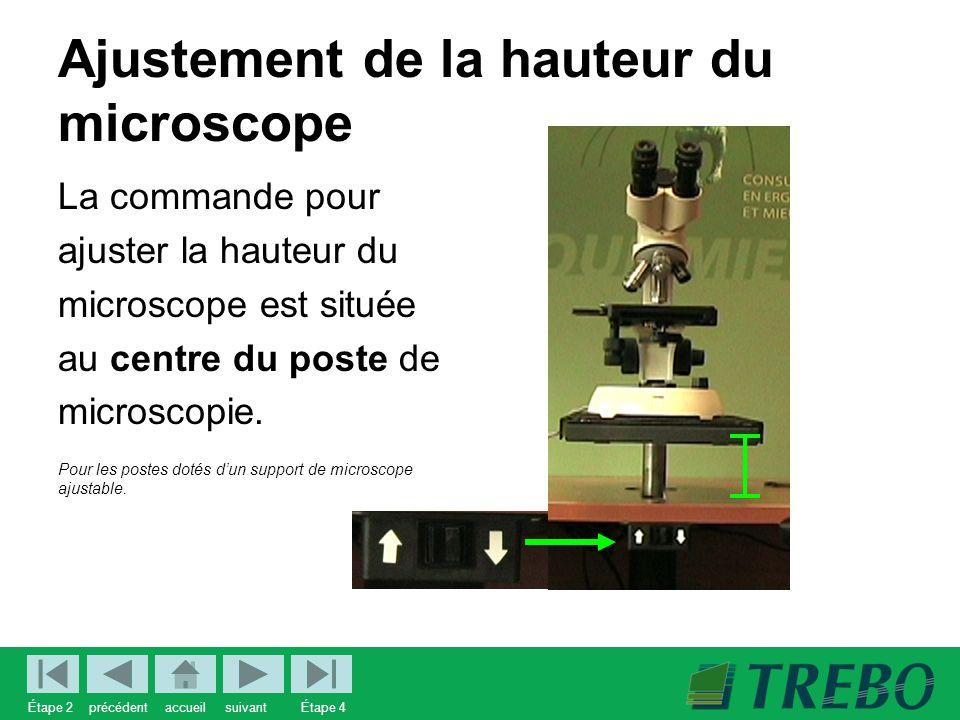 Ajustement de la hauteur du microscope