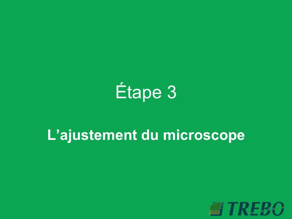 L'ajustement du microscope