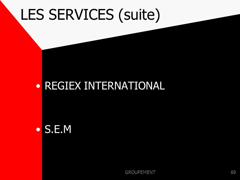 LES SERVICES (suite) REGIEX INTERNATIONAL S.E.M GROUPEMENT