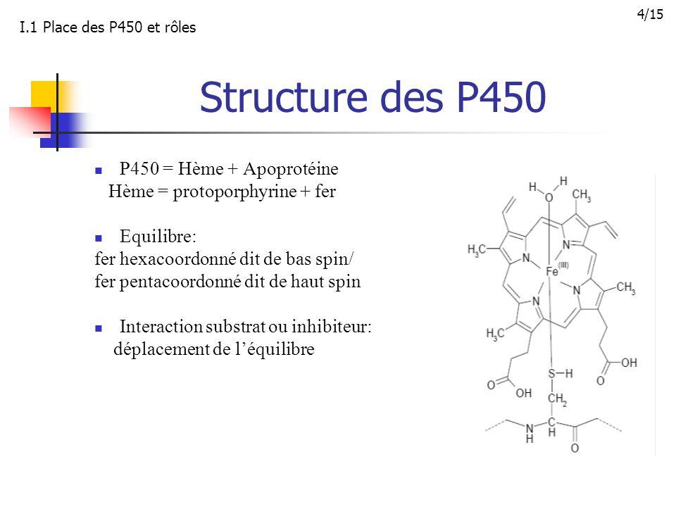 Structure des P450 P450 = Hème + Apoprotéine