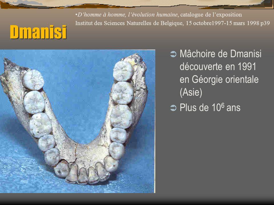 Dmanisi D'homme à homme, l'évolution humaine, catalogue de l'exposition.