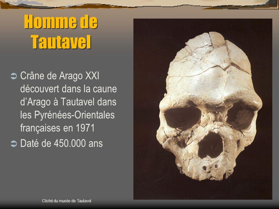 Homme de Tautavel Crâne de Arago XXI découvert dans la caune d'Arago à Tautavel dans les Pyrénées-Orientales françaises en 1971.