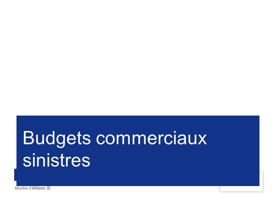 Budgets commerciaux sinistres