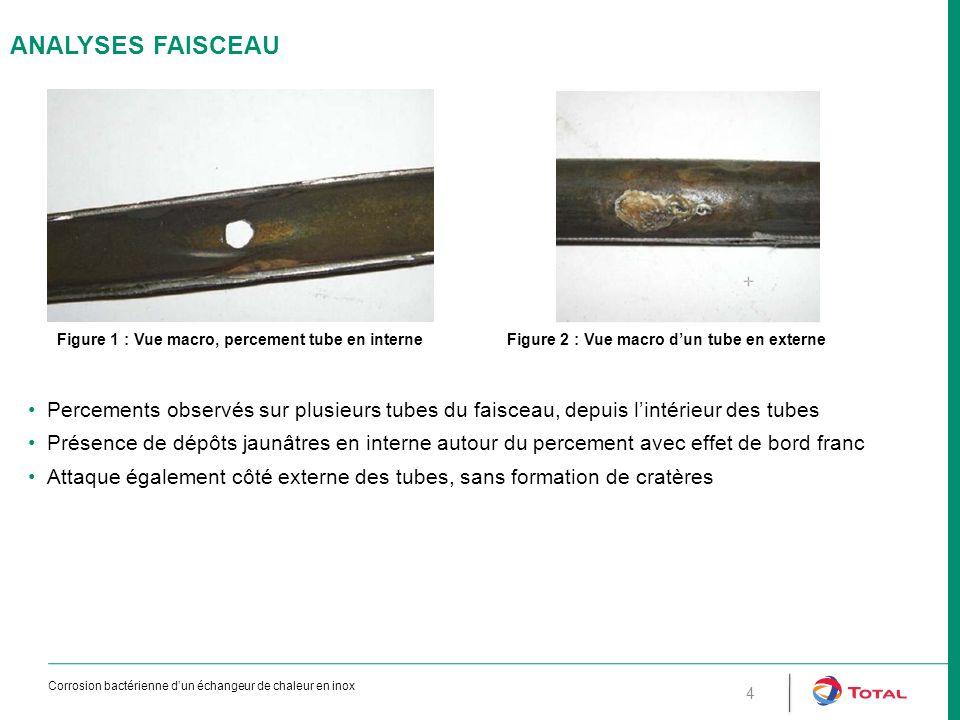 ANALYSES Faisceau Figure 1 : Vue macro, percement tube en interne. Figure 2 : Vue macro d'un tube en externe.