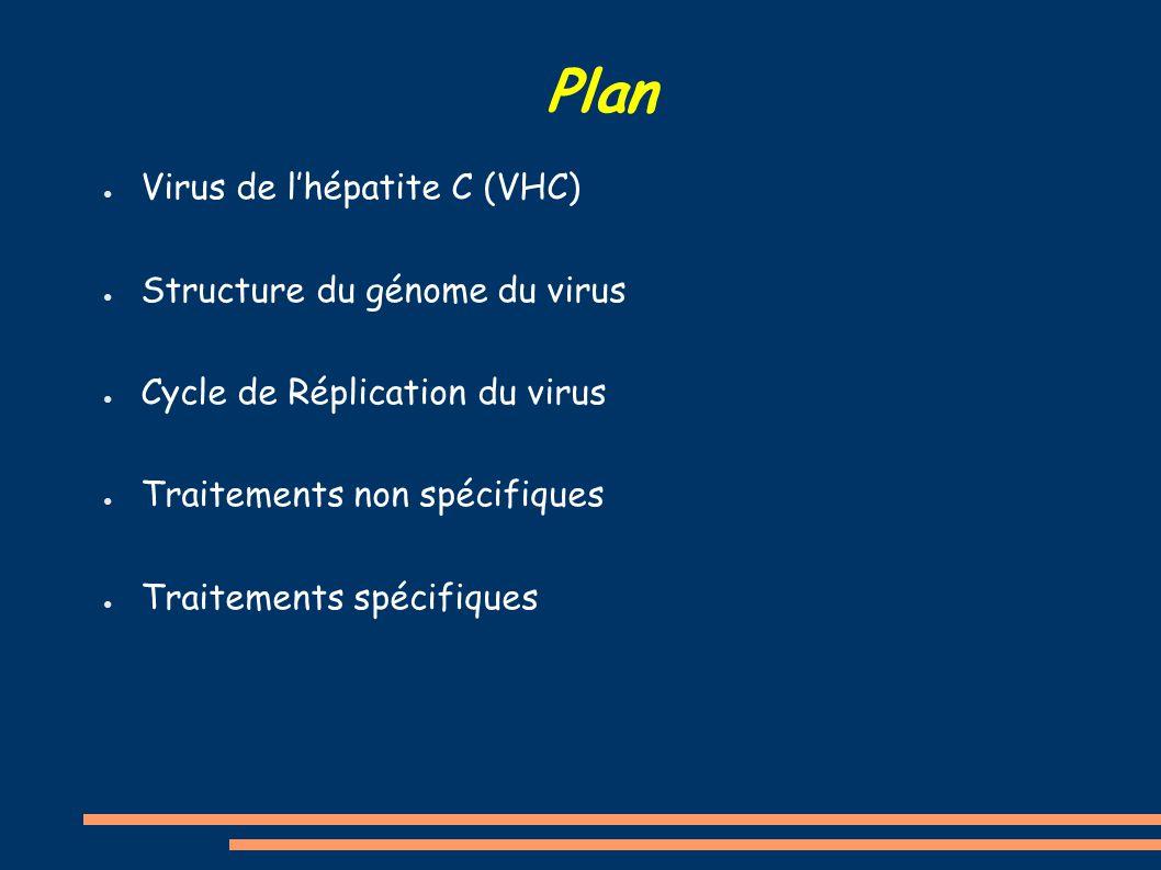 Plan Virus de l'hépatite C (VHC) Structure du génome du virus