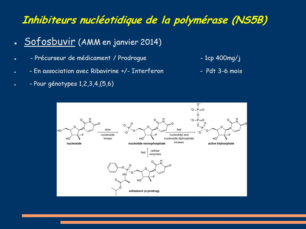 Inhibiteurs nucléotidique de la polymérase (NS5B)