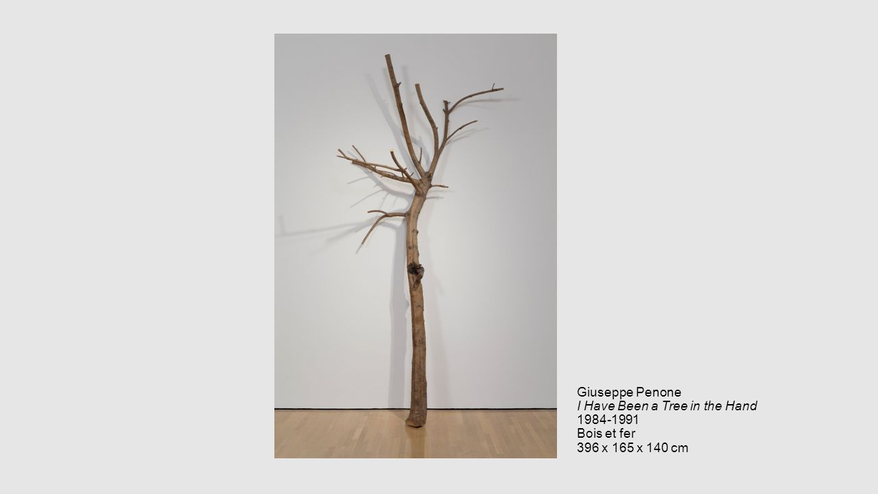 Giuseppe Penone I Have Been a Tree in the Hand 1984-1991 Bois et fer 396 x 165 x 140 cm
