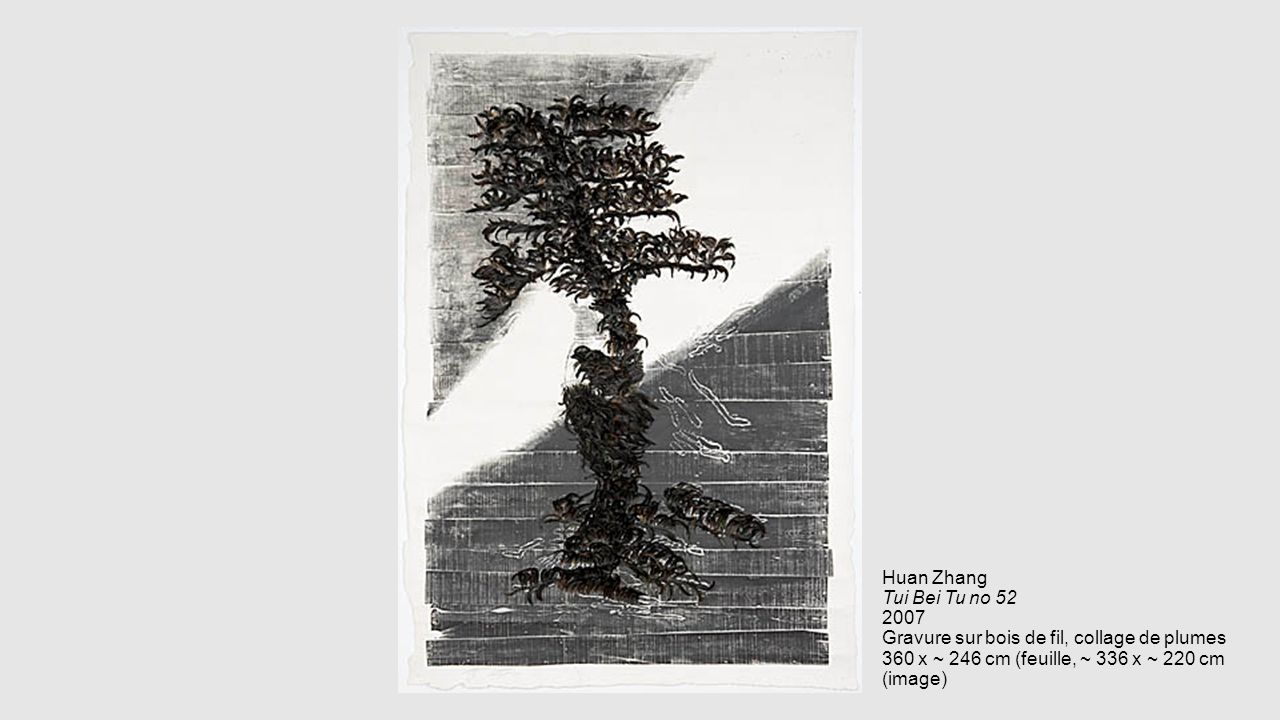 Huan Zhang Tui Bei Tu no 52 2007 Gravure sur bois de fil, collage de plumes 360 x ~ 246 cm (feuille, ~ 336 x ~ 220 cm (image)