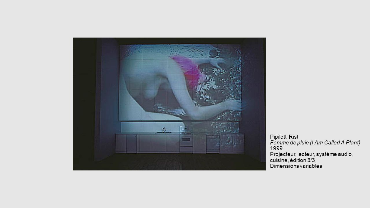 Pipilotti Rist Femme de pluie (I Am Called A Plant) 1999 Projecteur, lecteur, système audio, cuisine, édition 3/3 Dimensions variables