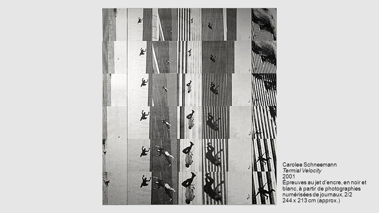 Carolee Schneemann Termial Velocity 2001 Épreuves au jet d encre, en noir et blanc, à partir de photographies numérisées de journaux, 2/2 244 x 213 cm (approx.)