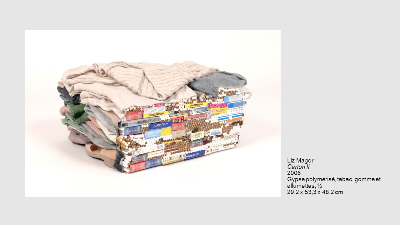 Liz Magor Carton II 2006 Gypse polymérisé, tabac, gomme et allumettes, ½