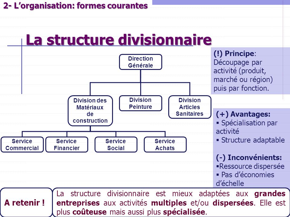 2- L'organisation: formes courantes