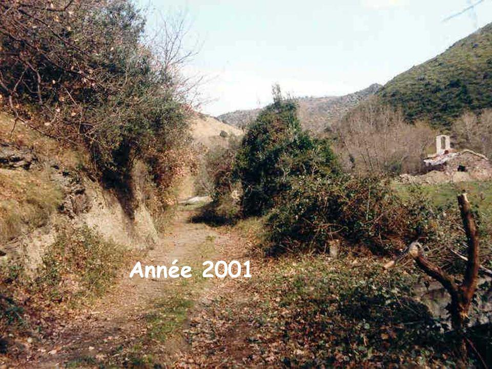 Année 2001
