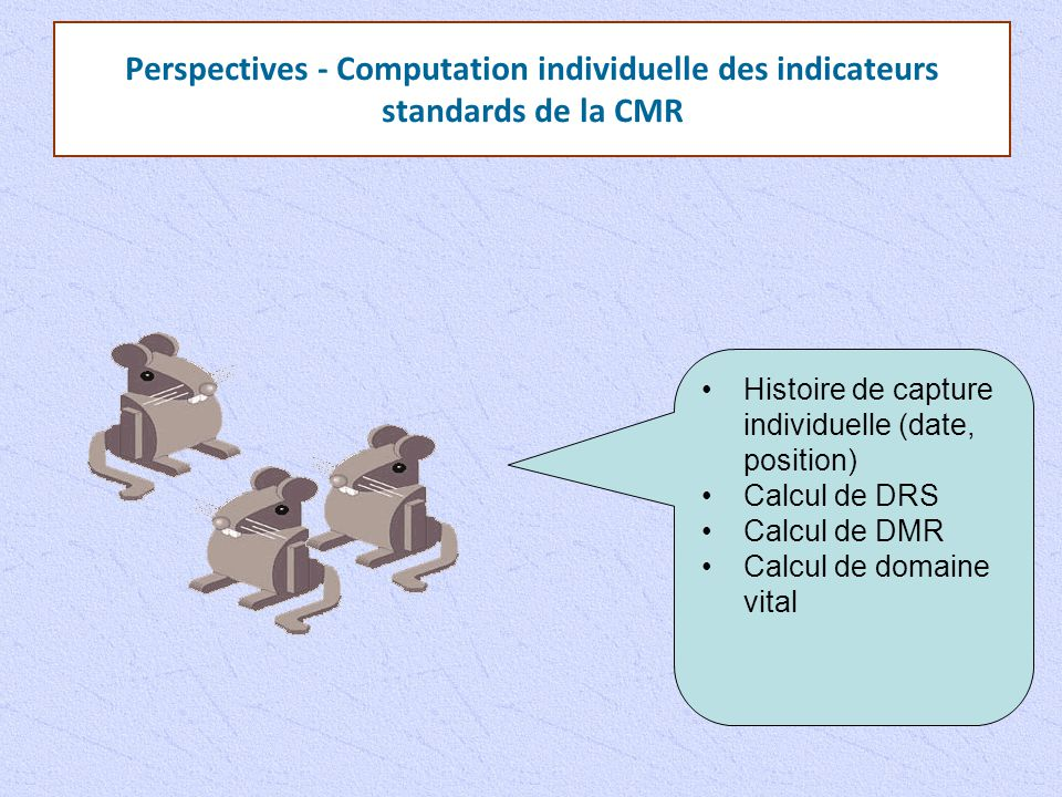 Perspectives - Computation individuelle des indicateurs standards de la CMR