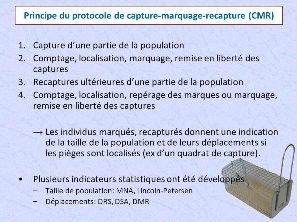 Principe du protocole de capture-marquage-recapture (CMR)