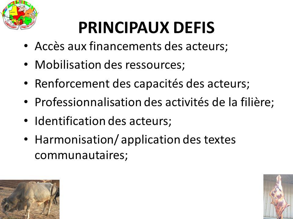 PRINCIPAUX DEFIS Accès aux financements des acteurs;
