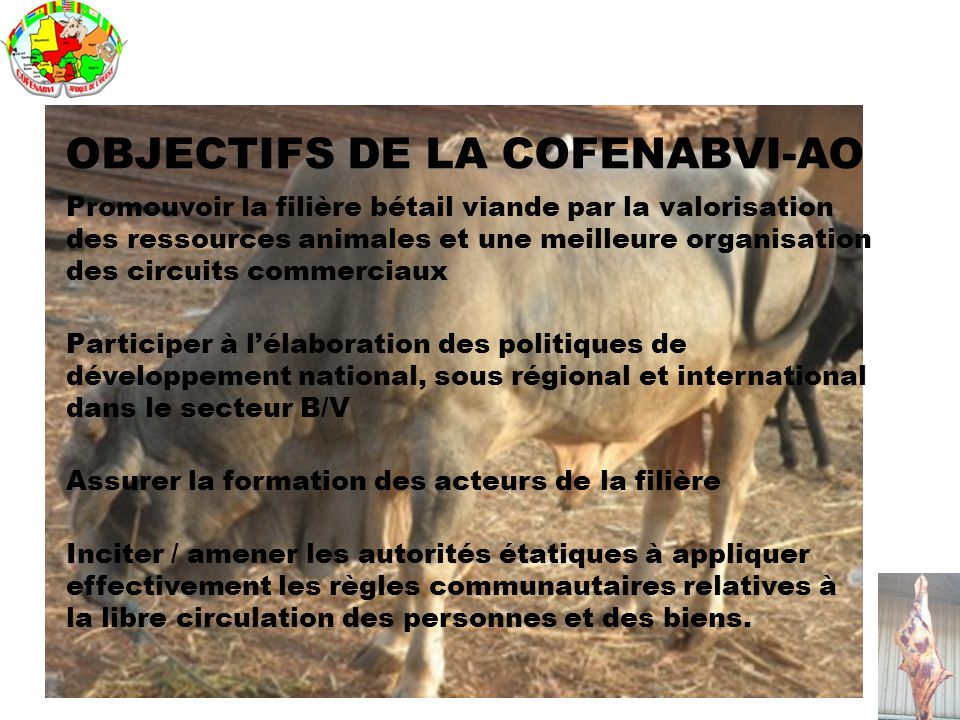OBJECTIFS DE LA COFENABVI-AO