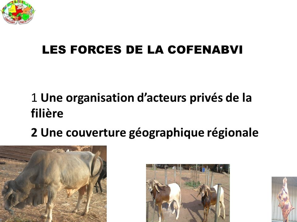LES FORCES DE LA COFENABVI
