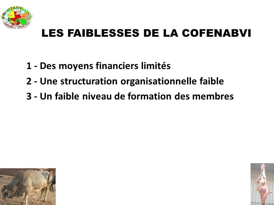 LES FAIBLESSES DE LA COFENABVI