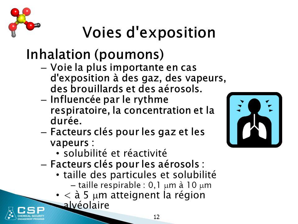 Voies d exposition Inhalation (poumons)