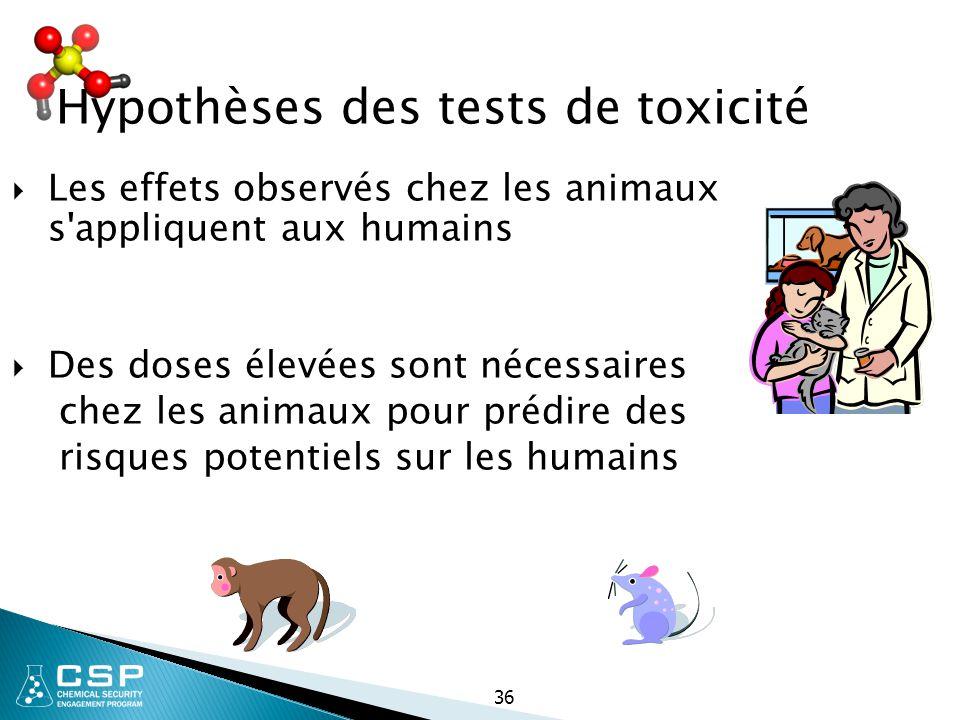 Hypothèses des tests de toxicité