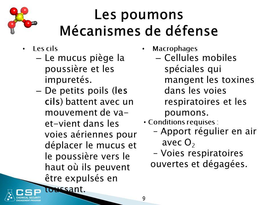 Les poumons Mécanismes de défense