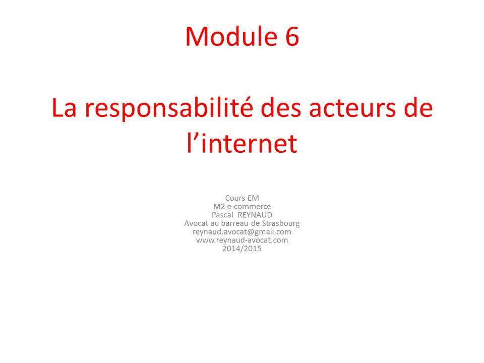 Module 6 La responsabilité des acteurs de l'internet