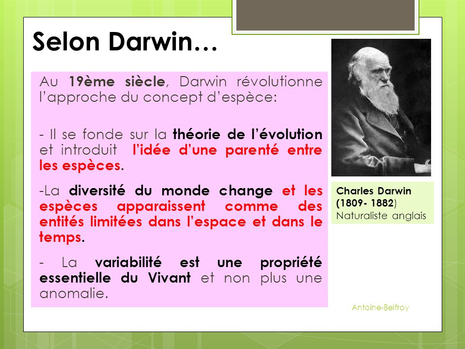 Selon Darwin… Au 19ème siècle, Darwin révolutionne l'approche du concept d'espèce: