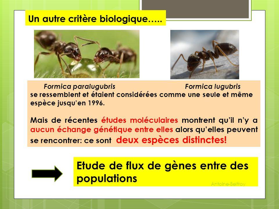 Un autre critère biologique…..