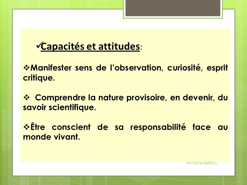 Capacités et attitudes: