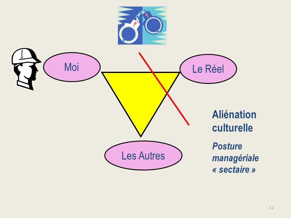 Aliénation culturelle