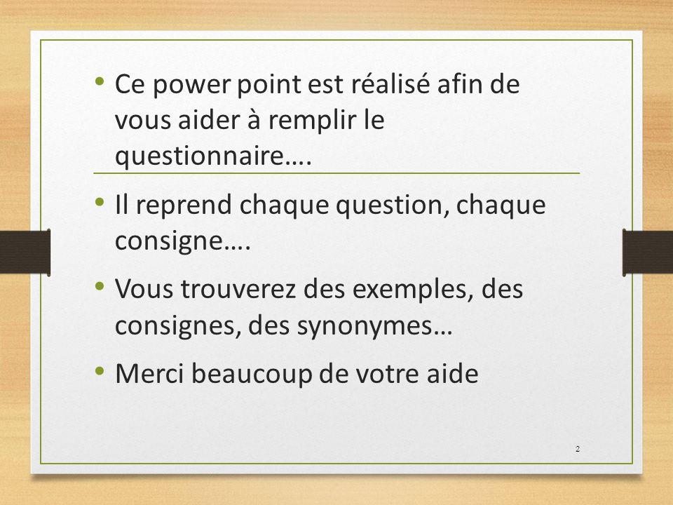 Ce power point est réalisé afin de vous aider à remplir le questionnaire….