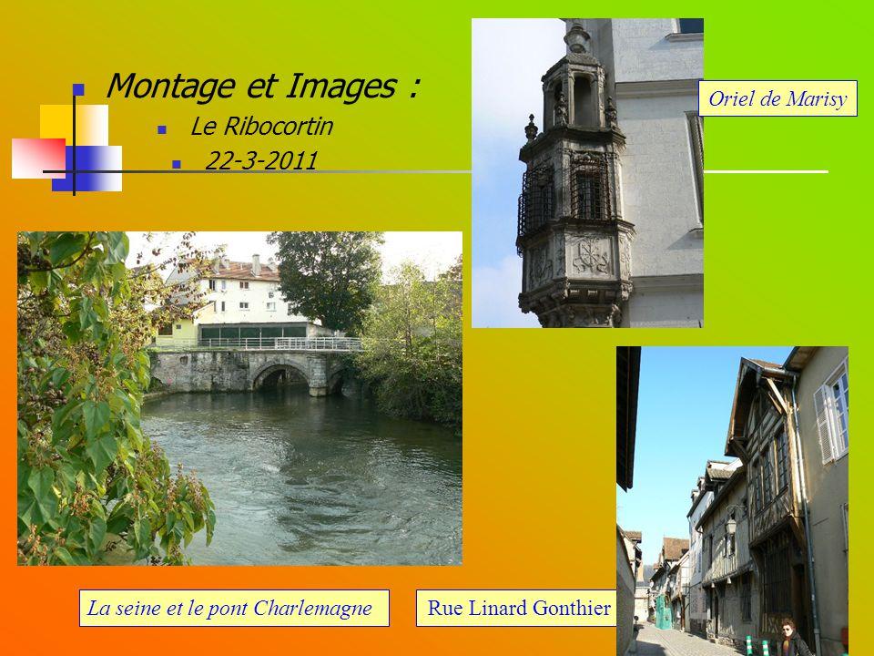 Montage et Images : Le Ribocortin 22-3-2011 Oriel de Marisy