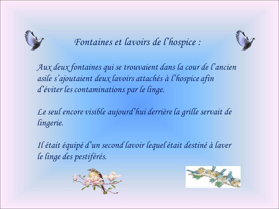 Fontaines et lavoirs de l'hospice :