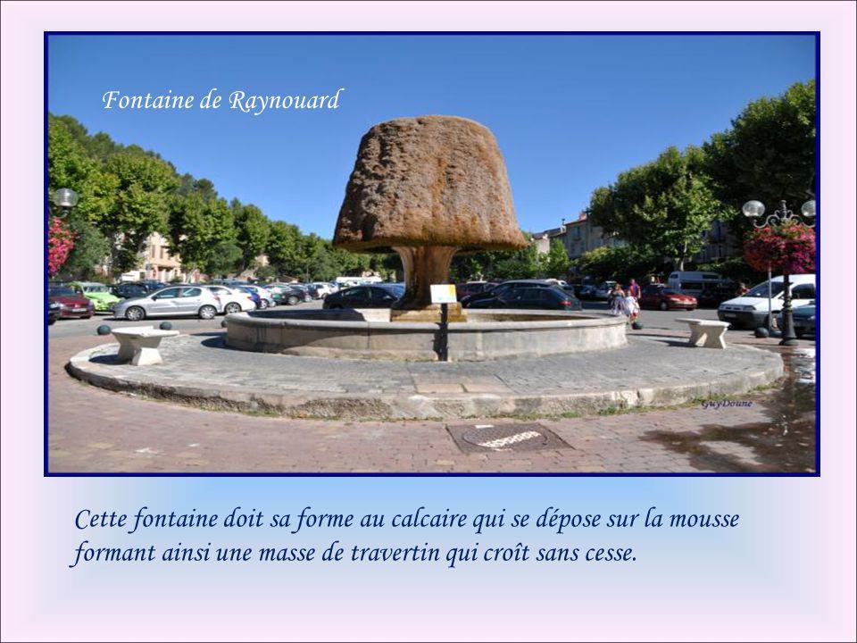 Fontaine de Raynouard Cette fontaine doit sa forme au calcaire qui se dépose sur la mousse formant ainsi une masse de travertin qui croît sans cesse.
