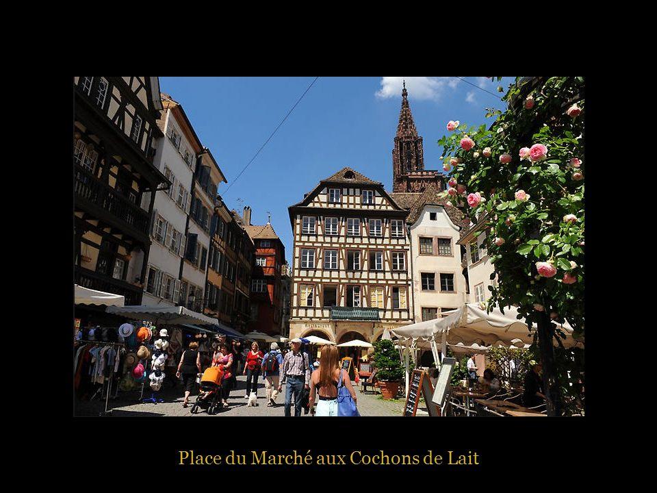 Place du Marché aux Cochons de Lait