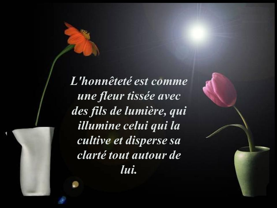 L honnêteté est comme une fleur tissée avec des fils de lumière, qui illumine celui qui la cultive et disperse sa clarté tout autour de lui.