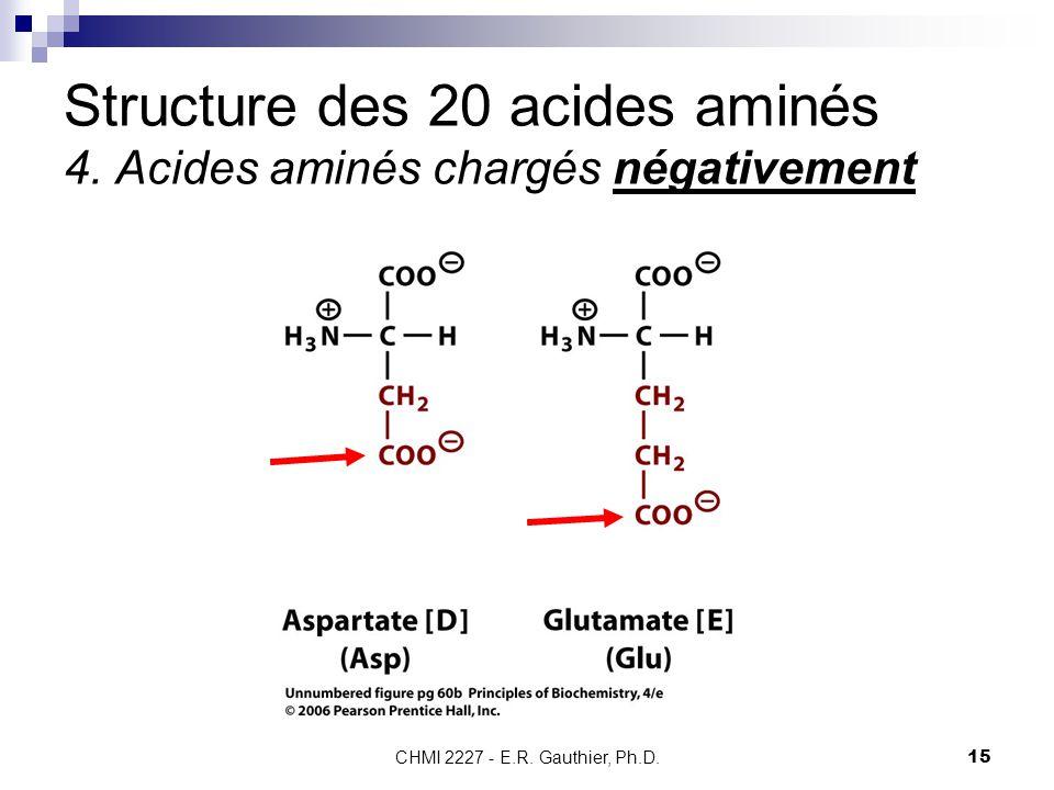 Structure des 20 acides aminés 4. Acides aminés chargés négativement